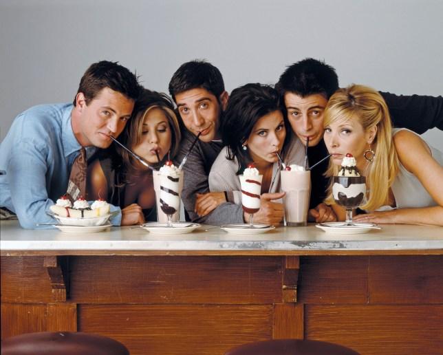 Friends Courteney Cox, Jennifer Aniston, Lisa Kudrow, Matt LeBlanc, Matthew Perry and David Schwimmer