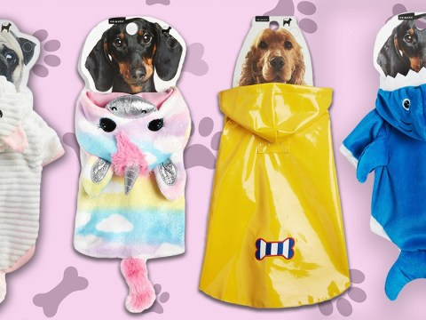 Kit your dog out in the cutest clothes for pups now at Primark