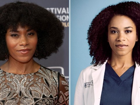Grey's Anatomy star Kelly McCreary says showing her natural hair on such a mainstream show has been a real boost for fans