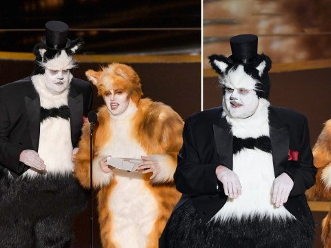 Oscars 2020: James Corden and Rebel Wilson dress up as Cats and cause havoc on stage
