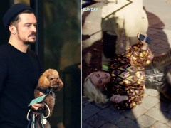 Orlando Bloom strolls through Milan with his dog amid Katy Perry's 'gas leak' collapse