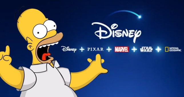 homer simpson next to the disney plus logo