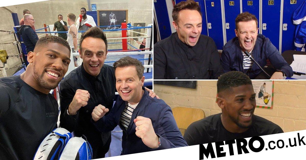 Anthony Joshua barks at bewildered chef on Ant and Dec's Saturday Night Takeaway