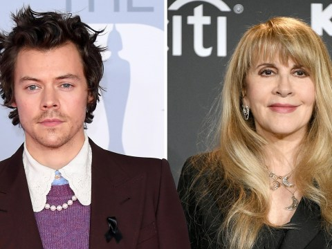 Harry Styles calls hanging out with Stevie Nicks an 'out of body experience'