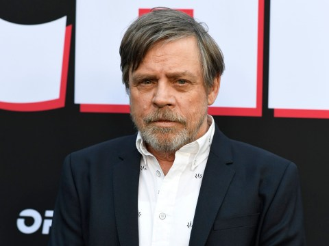 Sorry folks, Mark Hamill won't be reprising his iconic role for Star Wars anytime soon