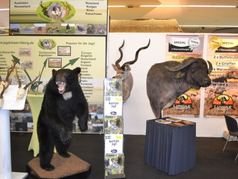 Inside Europe's largest trophy hunting fair offering cheap deals on 'easy' animal killing trips