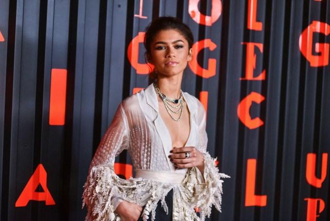Mandatory Credit: Photo by Erik Pendzich/REX (10550259w) Zendaya Bvlgari x B.Zero1 Rock Collection debut party, Fall Winter 2020, New York Fashion Week, USA - 06 Feb 2020