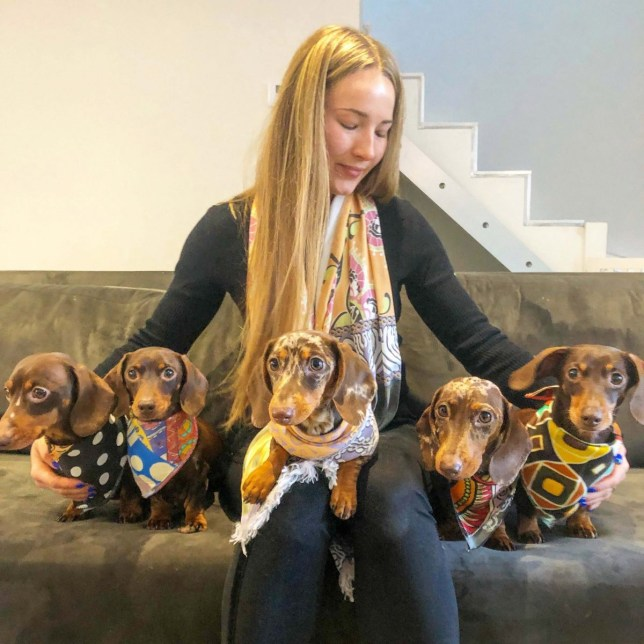 PIC BY sausage squad / CATERS NEWS - (PICTURED: Harriet Birch, 25, a dog walker, from Harrogate, North Yorkshire with the Sausage Dogs.) - This super-chic sausage squad are wowing fans all over the world - after their adorable co-ordinated adventures made them Insta-celebs. Harriet Birch, 25, a dog walker, from Harrogate, North Yorkshire, loves spoiling her five pooches Missy, Button, Duke, Ivy, and Apple, and says she is always stunned by her pooches popularity. Harriet got Missy in 2010 after begging her parents for so long and when Missy had two litters, she decided to keep one from each, Button and Duke. Then Duke found a girlfriend, Ivy and they had their own litter, from which Harriet decided to keep Apple to complete her squad. She said: They are definitely pampered pooches - they have so many clothes, accessories, toys and we do so many activities, they go swimming every week and they do agility every week too. - SEE CATERS COPY