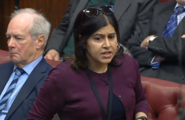 Baroness Warsi, House of Lords 13.02.2020 (Picture: Parliament TV)