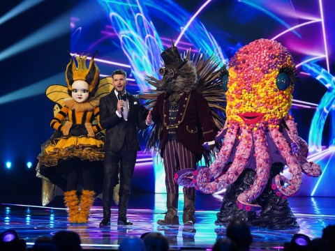 Who was unmasked in The Masked Singer final and who else was on the series?