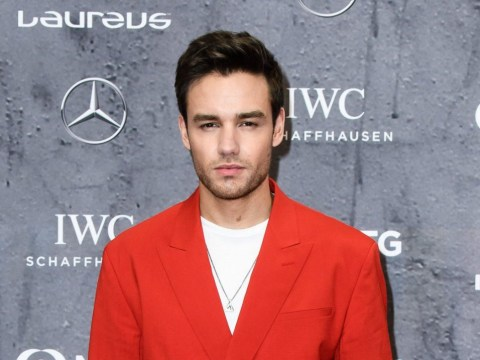 Liam Payne 'heckled in McDonald's' after X Factor rejection