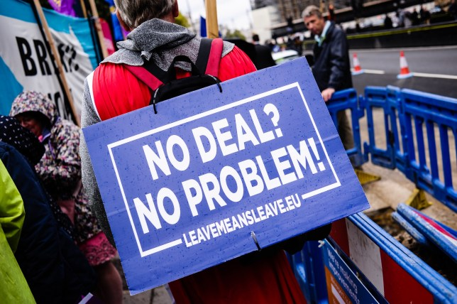 LONDON, UNITED KINGDOM - 2019/09/09: A pro-Brexit activist holds a placard that says No Deal? No Problem!' outside the Houses of Parliament in London on the day of the prorogation of the parliamentary session, which will see parliamentary activities suspended until mid-October. (Photo by David Cliff/SOPA Images/LightRocket via Getty Images)