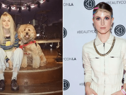 Paramore's Hayley Williams' dog Alf is the 'reason she's alive' after depression struggle