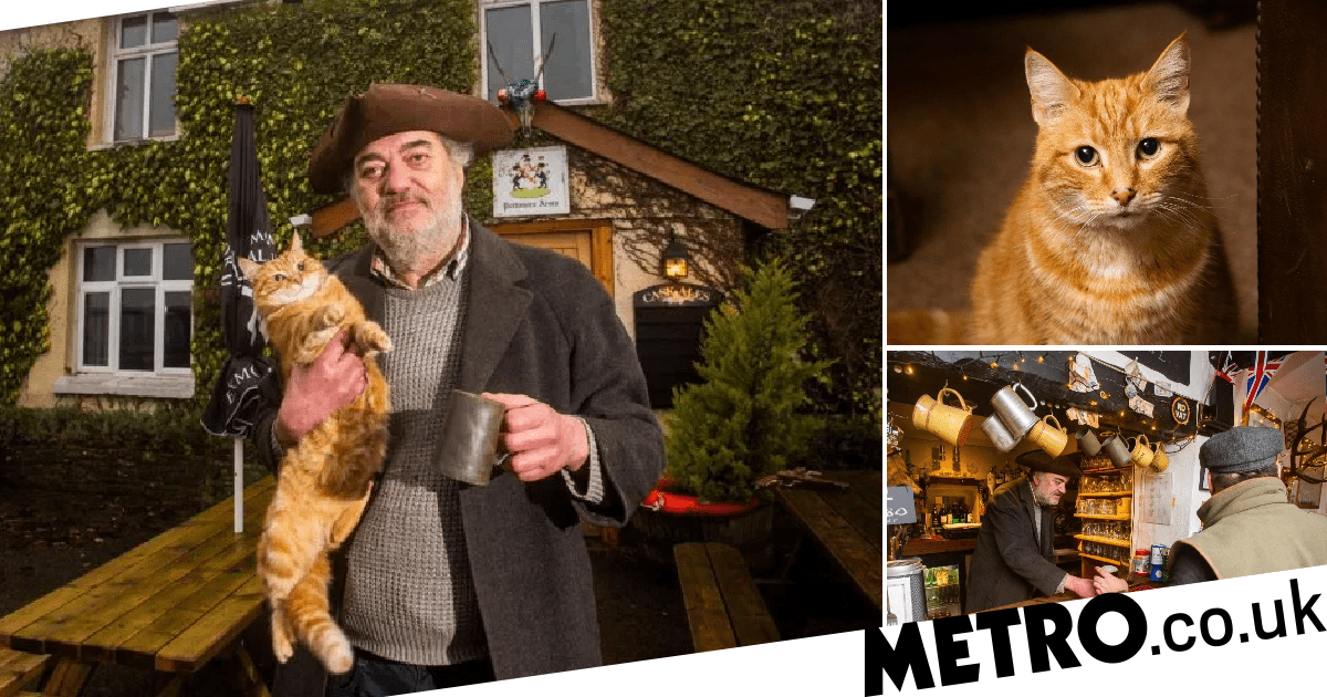 UK's grumpiest pub landlord has cat called Hitler and you have to serve yourself