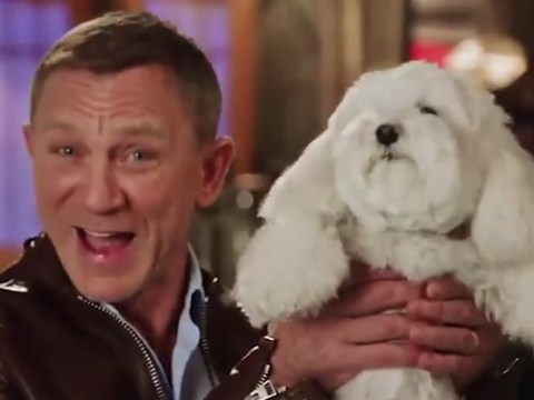 Daniel Craig softens blow of James Bond delay with adorable dog video as he teases SNL stint