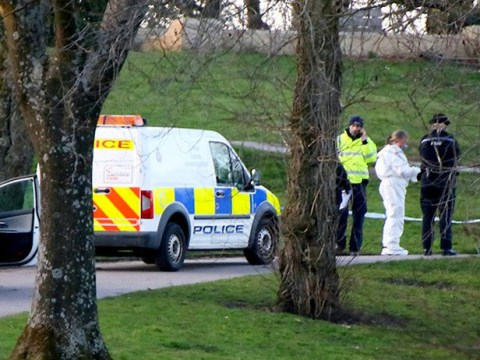 Girl, seven, 'stabbed to death in random attack in park'