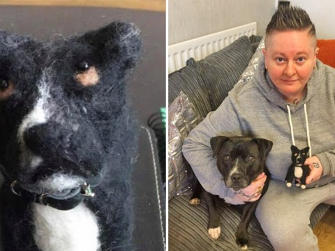 Woman orders mini felt replica of her dog, gets one that looks 'like it's had a stroke'