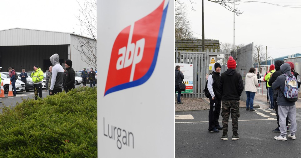 Food factory workers staging walkouts in Northern Ireland at ABP factory in Lurgan.