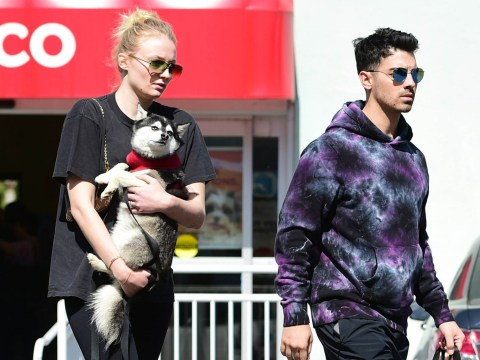 Sophie Turner covers stomach by cuddling up to pet dog on outing with husband Joe Jonas