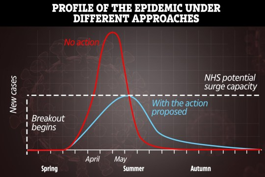 profile of the epidemic under different approaches coronavirus graph