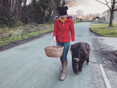 Miniature Shetland pony delivers supplies to vulnerable people self-isolating due to coronavirus