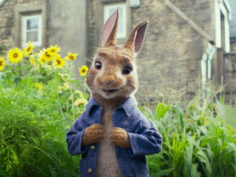 James Corden's Peter Rabbit 2 pushed back five months amid coronavirus outbreak
