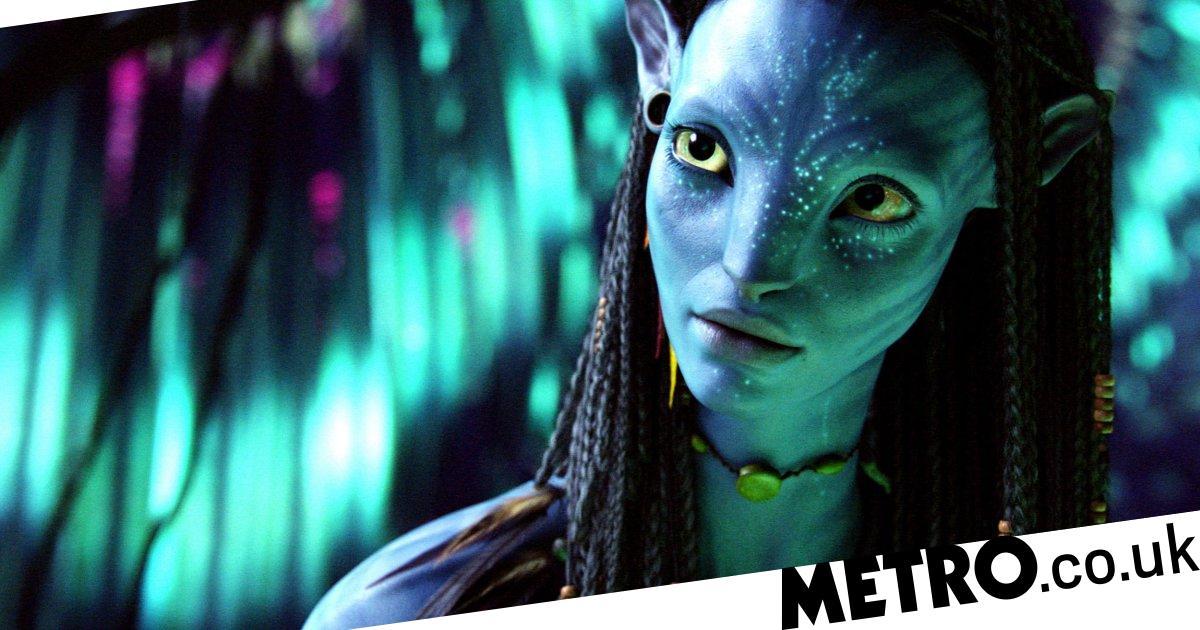 Avatar Filming Delayed In New Zealand Due To Coronavirus Metro News