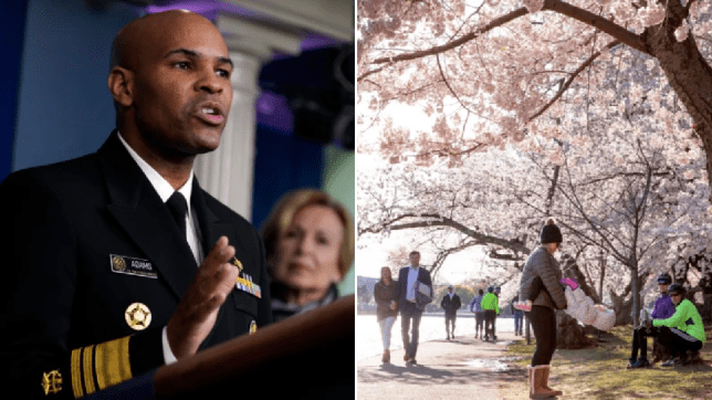Photo of Dr Jerome Adams next to photo of people enjoying cherry blossom in Washington DC