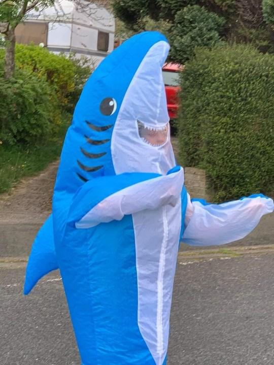 steven the shark