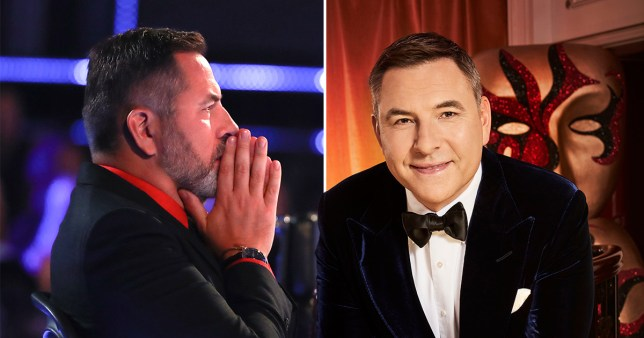 EMB MID - David Walliams reveals horror of death-defying stunt on BGT