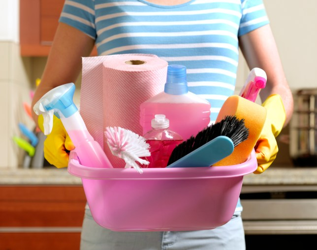 A woman holding cleaning products in a tray
