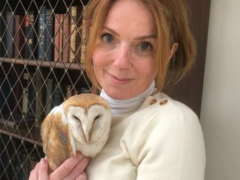 Geri Horner saves an injured owl who hurt his wing during self-isolation