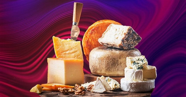 different cheeses on a colourful background