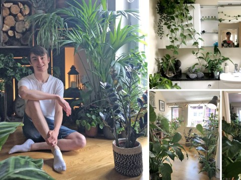 Man fills his home with 1,400 houseplants so he can live in a mini jungle