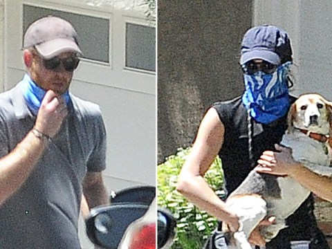 Harry and Meghan cover faces with bandanas as they walk their dogs in LA