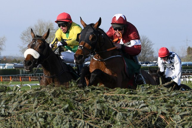 Will Tiger Roll win this year's virtual Grand National?