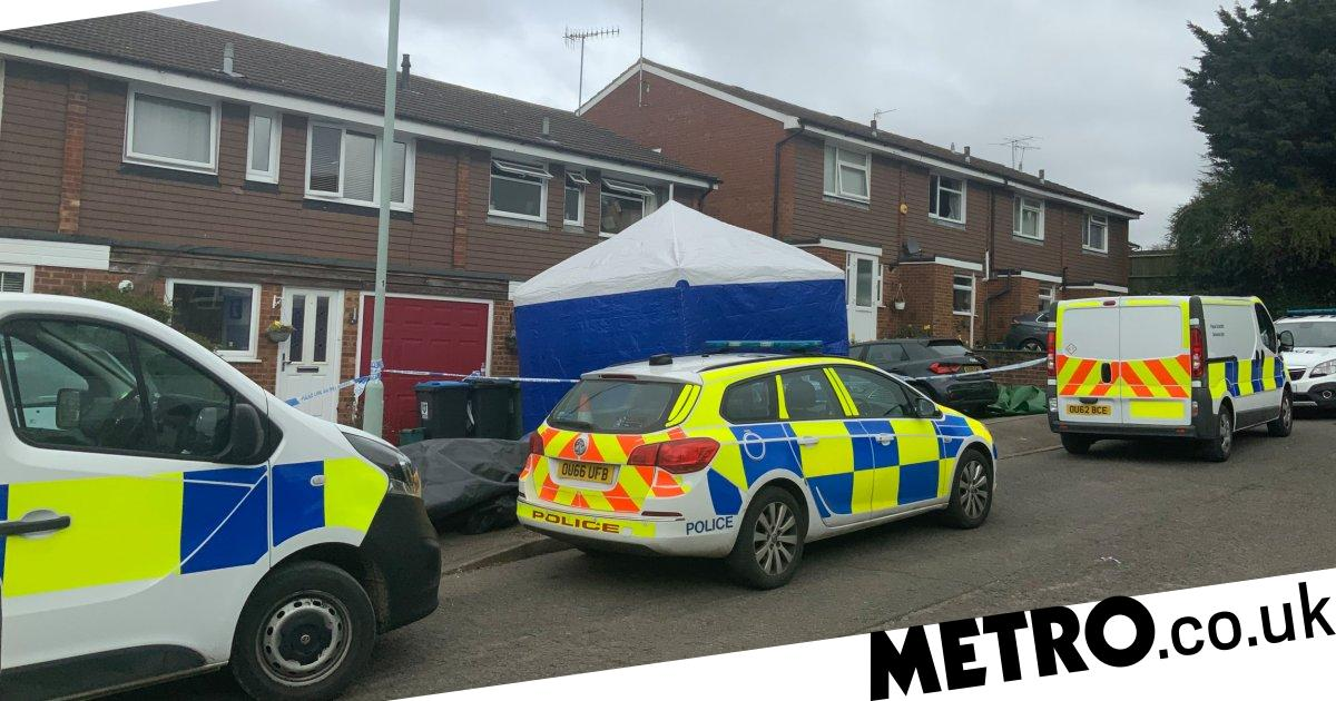 Mum and daughter stabbed to death before dad died in house fire - metro