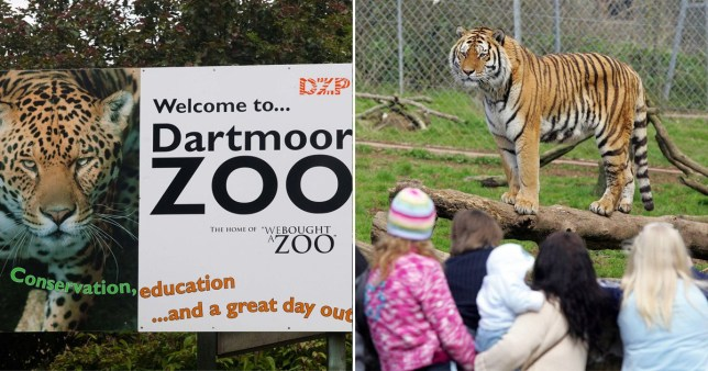 Zoo can afford to feed animals for just two more weeks
