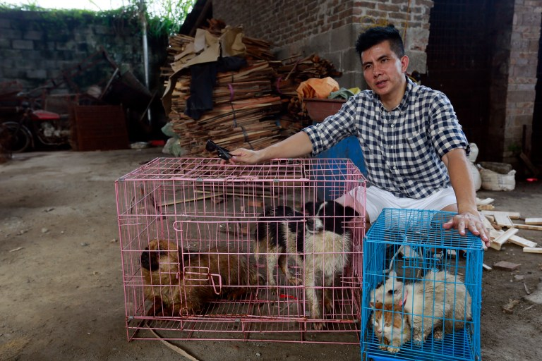 Peter Li with two rescued dogs and two rescued cats