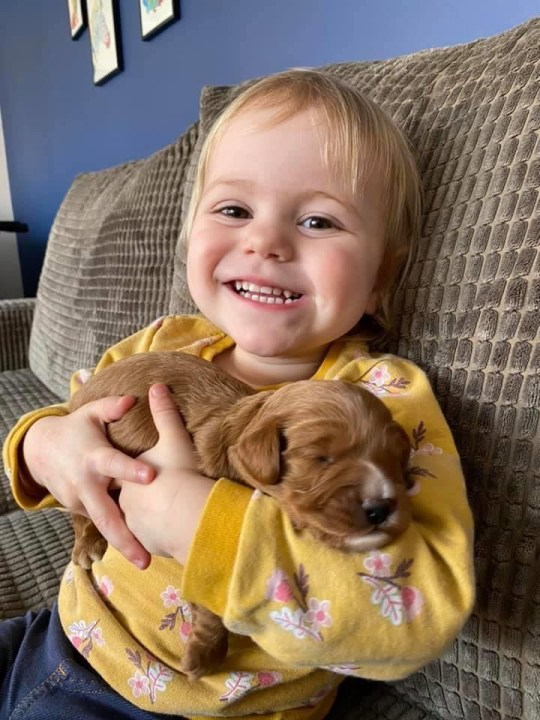 Sariah with one of the puppies before the hair cut