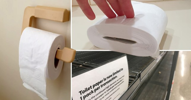 close up of the toilet paper