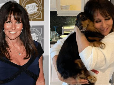 Linda Lusardi faces fresh heartbreak as beloved dog dies weeks after her terrifying coronavirus battle