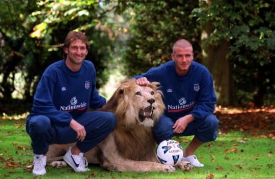Tony Adams and David Beckham pose with a lion