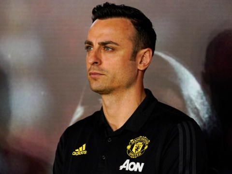 Dimitar Berbatov tried to avoid Nemanja Vidic in training as Man Utd legend would kick 'everyone'
