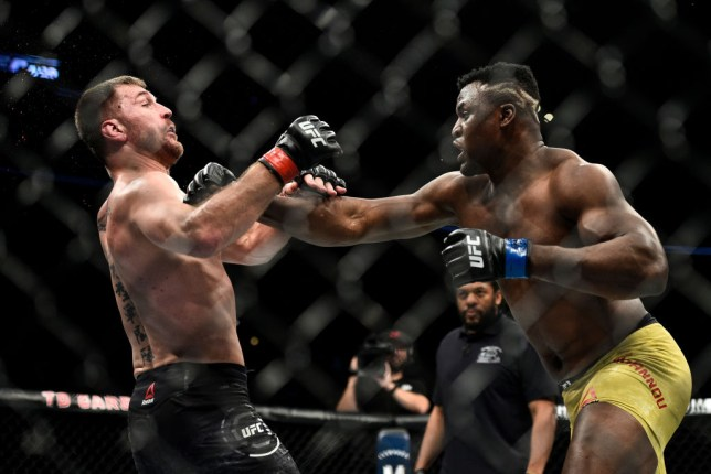 Stipe Miocic is punched by Francis Ngannou