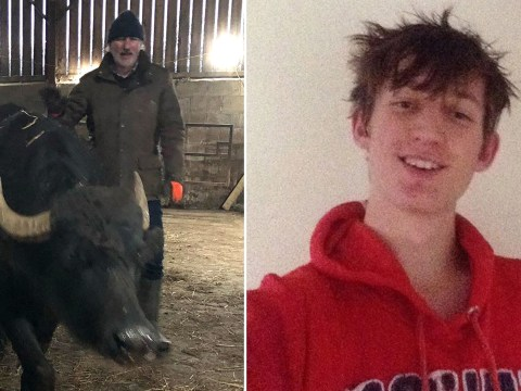 Teenager dies from his injuries after being trampled by a water buffalo in Wales