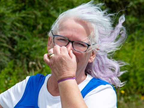 Horrified woman saw tourist doing a poo in her garden as public loos are closed