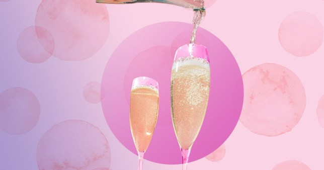 glasses of Prosecco on a pink background