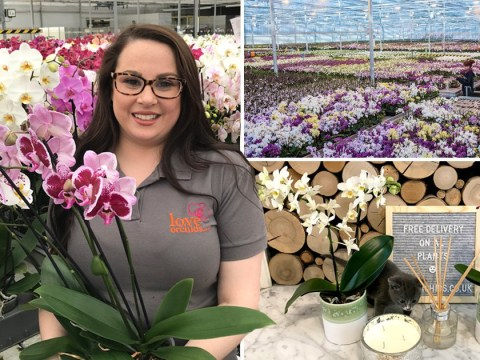 Where I Work: Holly, who's delivering orchids to people's doorsteps in lockdown