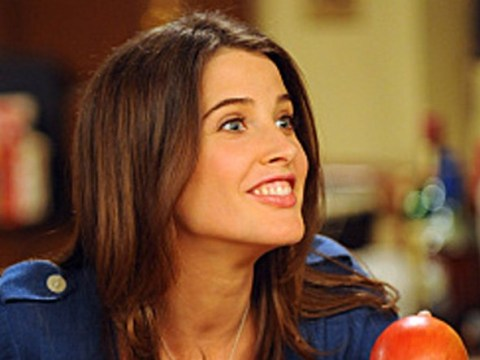 Cobie Smulders defends How I Met Your Mother's controversial ending: 'It makes sense'